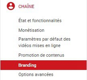 Cliquer sur « Branding »