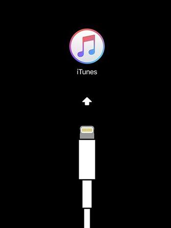 connecter l'iPhone à l'ordinateur